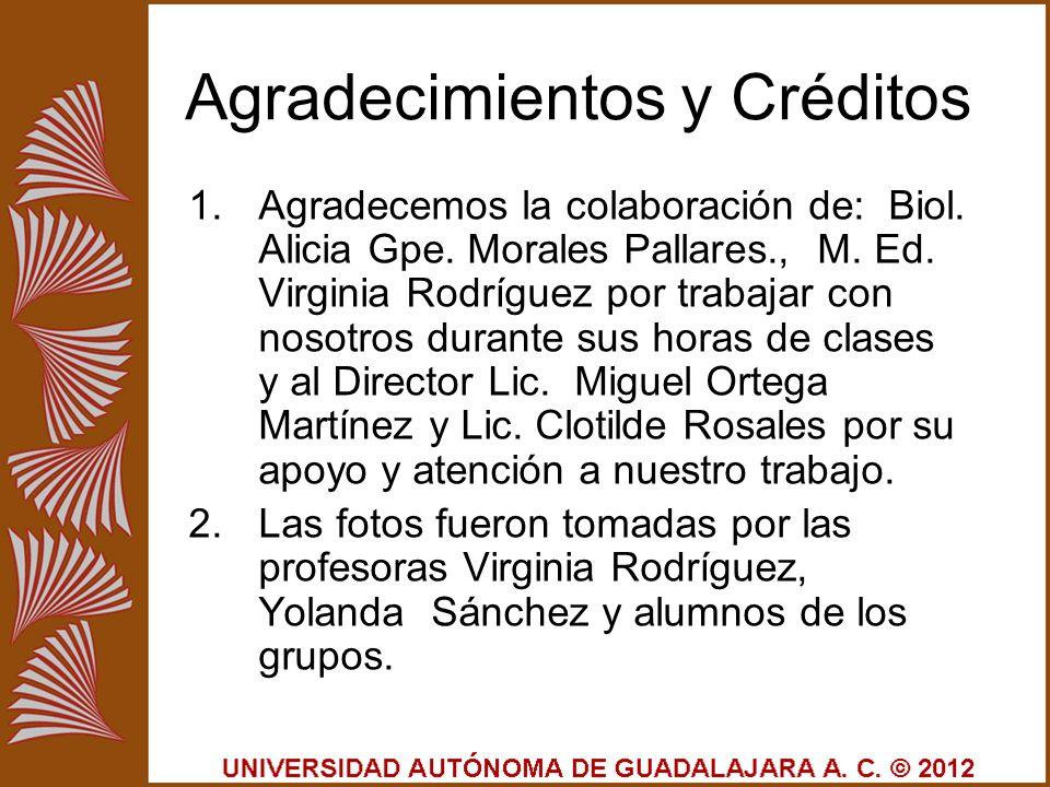Agradecimientos y Créditos 1.Agradecemos la colaboración de: Biol. Alicia Gpe. Morales Pallares., M. Ed. Virginia Rodríguez por trabajar con nosotros