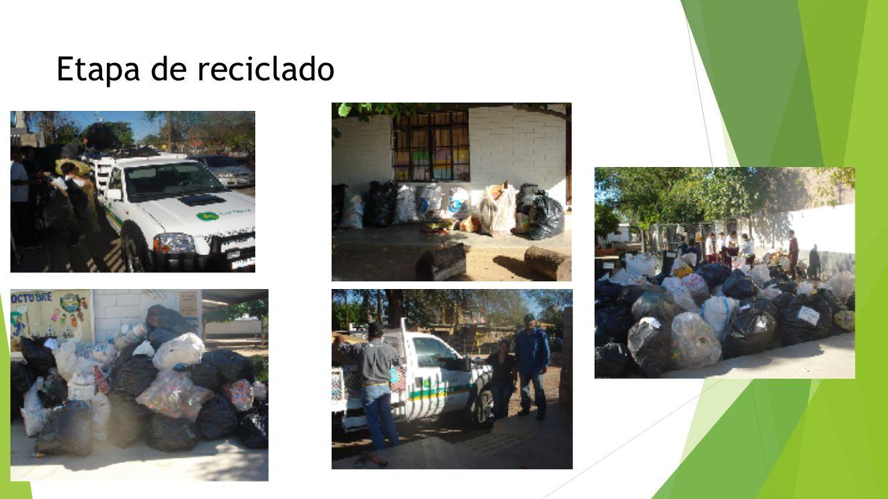 Etapa de reciclado