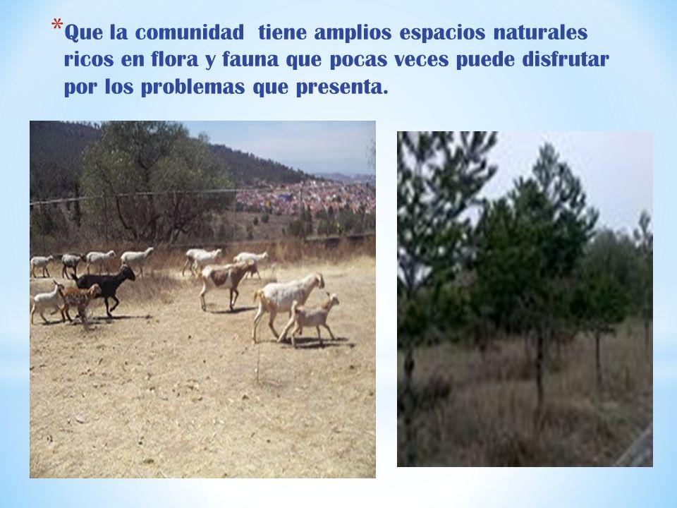 * Que la comunidad tiene amplios espacios naturales ricos en flora y fauna que pocas veces puede disfrutar por los problemas que presenta.
