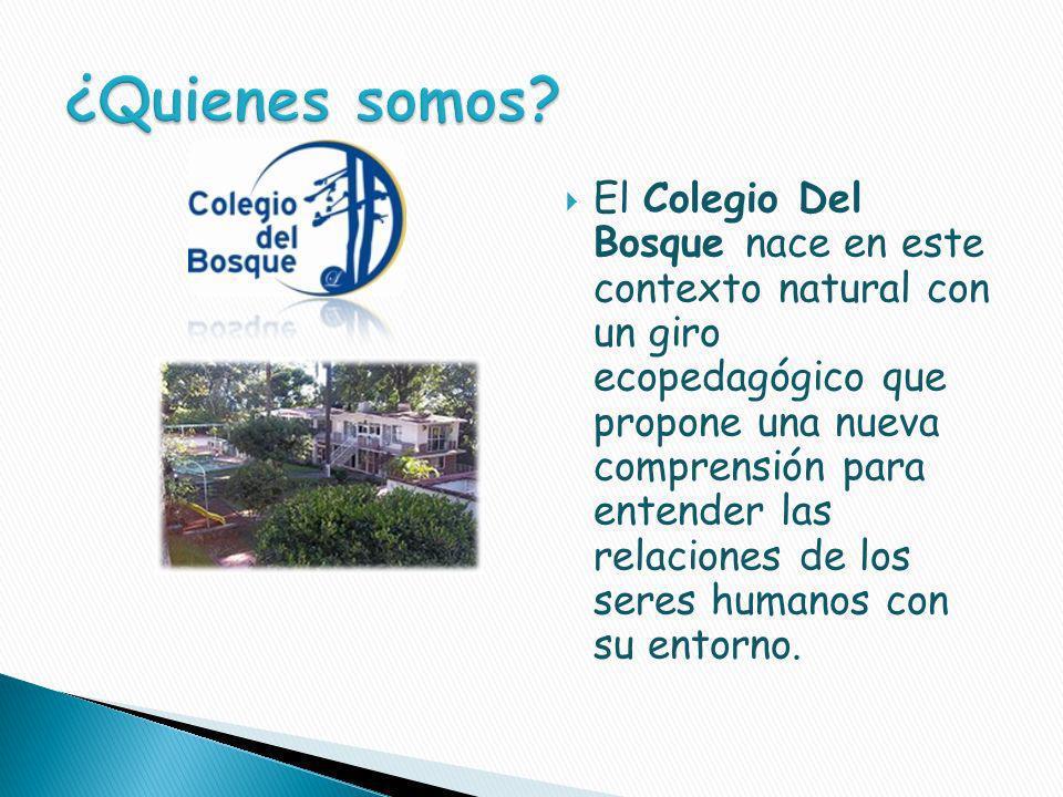 El Colegio Del Bosque nace en este contexto natural con un giro ecopedagógico que propone una nueva comprensión para entender las relaciones de los seres humanos con su entorno.