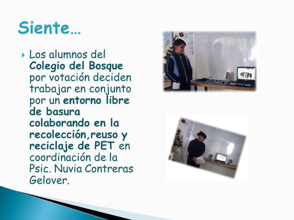 Los alumnos Fernando, Sadán y Alexis de la sección secundaria realizaron una investigación titulada La Basura en Morelos apoyados por su maestra de la materia de Cultura Ambiental.