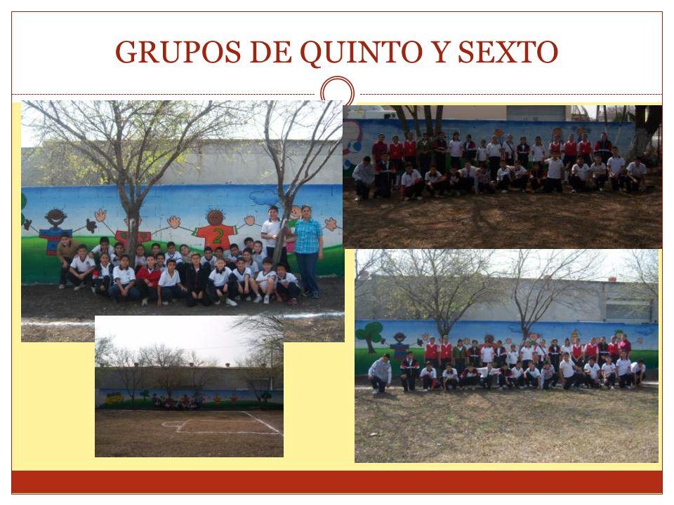 GRUPOS DE QUINTO Y SEXTO