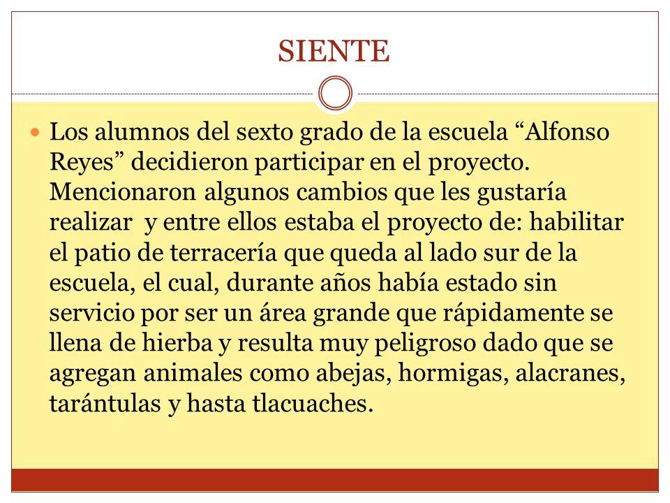 SIENTE Los alumnos del sexto grado de la escuela Alfonso Reyes decidieron participar en el proyecto. Mencionaron algunos cambios que les gustaría real