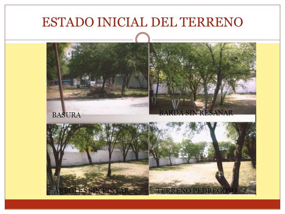 IMAGINA La escuela tiene 2 grandes áreas sin pavimentar, a las que poco se les da mantenimiento debido a que la hierba crece con mucha rapidez y esa misma situación hace que sea costoso mantener limpio el terreno.