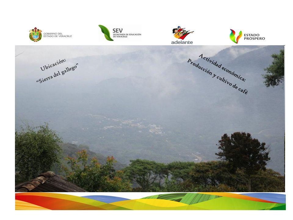 Ubicación: Sierra del gallego Actividad económica: Producción y cultivo de café