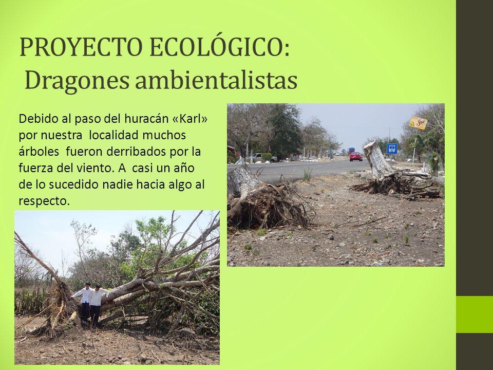PROYECTO ECOLÓGICO: Dragones ambientalistas Debido al paso del huracán «Karl» por nuestra localidad muchos árboles fueron derribados por la fuerza del