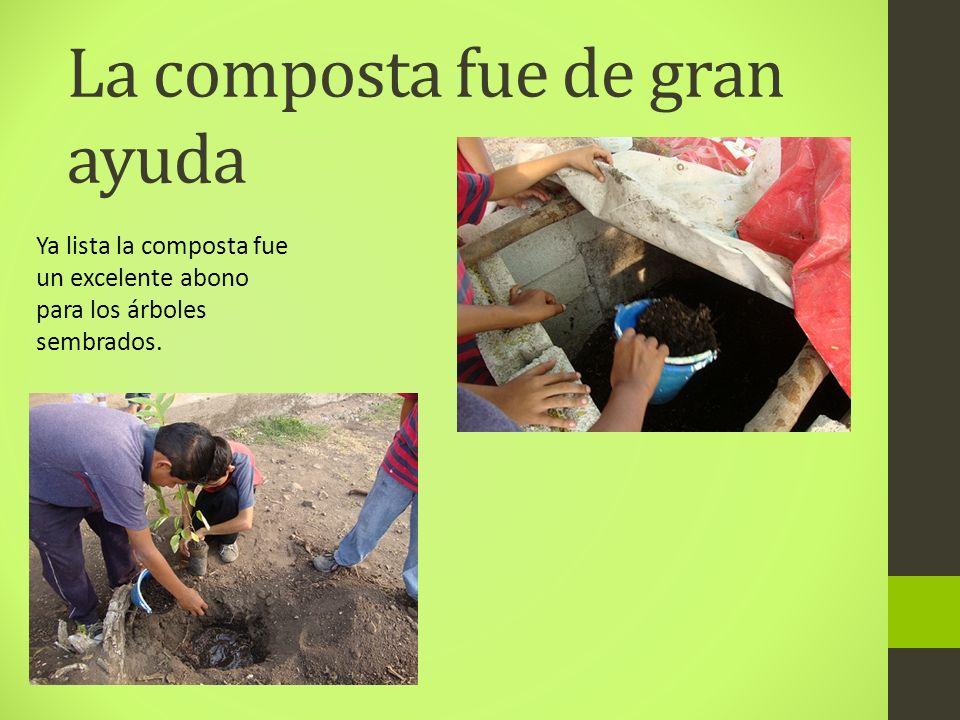 La composta fue de gran ayuda Ya lista la composta fue un excelente abono para los árboles sembrados.