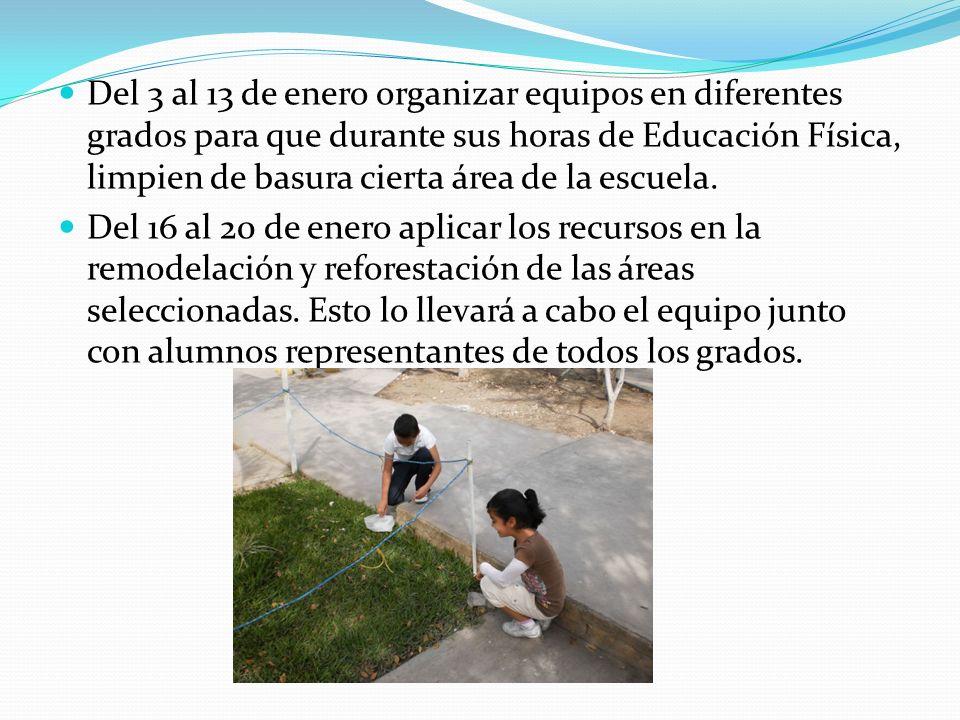 Del 3 al 13 de enero organizar equipos en diferentes grados para que durante sus horas de Educación Física, limpien de basura cierta área de la escuel