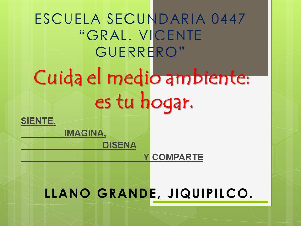 Cuida el medio ambiente: es tu hogar. SIENTE, IMAGINA, DISENA Y COMPARTE LLANO GRANDE, JIQUIPILCO. ESCUELA SECUNDARIA 0447 GRAL. VICENTE GUERRERO