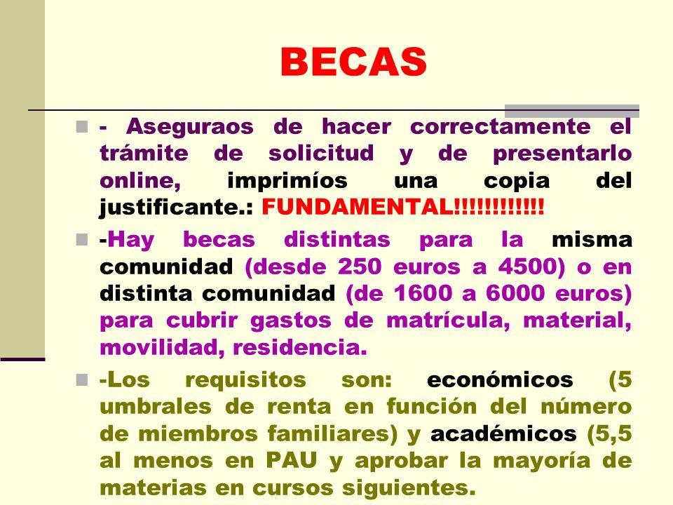 BECAS DEL MINISTERIO DE EDUCACÍÓN DE ESPAÑA. ES LA MÁS IMPORTANTE. JULIO A OCTUBRE APROXIMADAMENTE http://www.educacion.gob.es/horizontales/servicios/