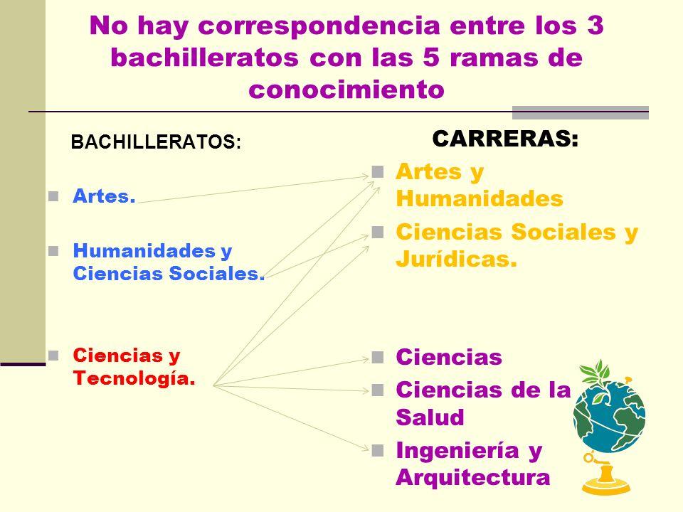 EN LA UNIVERSIDAD HAY 5 RAMAS DE CONOCIMIENTO: Cada carrera corresponde a una de ellas ARTES Y HUMANIDADES: H istoria, Idiomas, Bellas Artes, Traducci