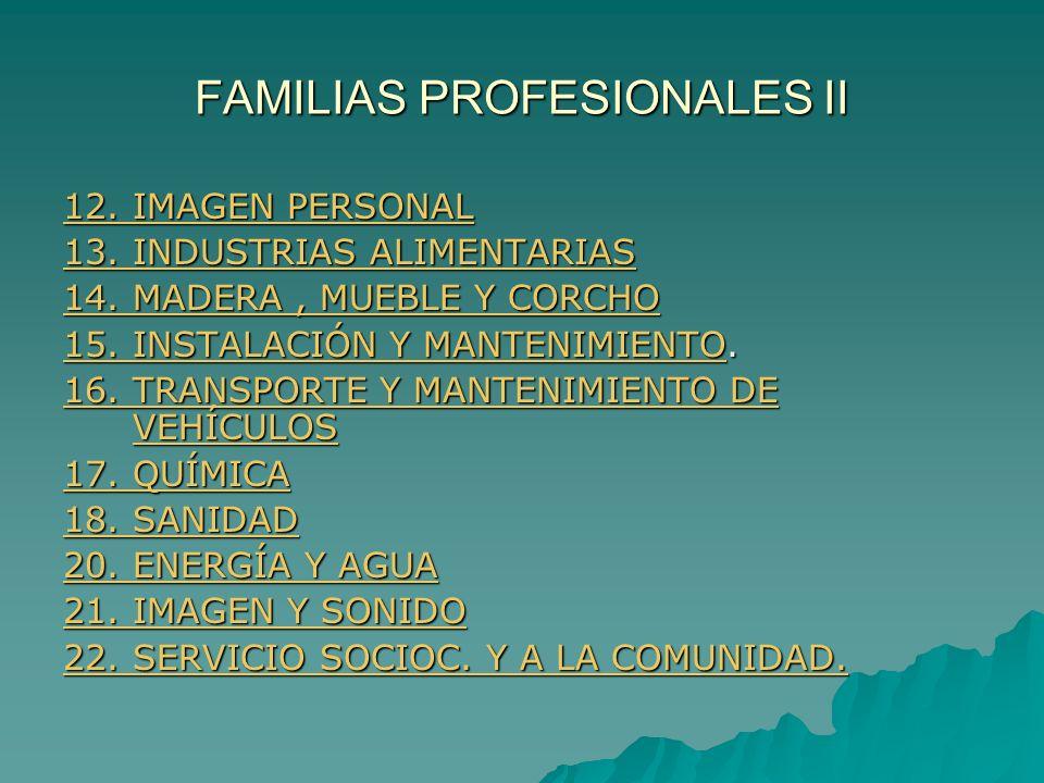 FAMILIAS PROFESIONALES II 12. IMAGEN PERSONAL 12. IMAGEN PERSONAL 13. INDUSTRIAS ALIMENTARIAS 13. INDUSTRIAS ALIMENTARIAS 14. MADERA, MUEBLE Y CORCHO