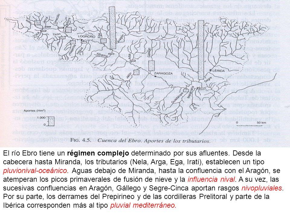 El río Ebro tiene un régimen complejo determinado por sus afluentes. Desde la cabecera hasta Miranda, los tributarios (Nela, Arga, Ega, Irati), establ