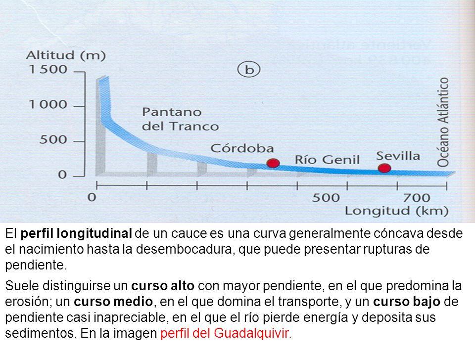 El perfil longitudinal de un cauce es una curva generalmente cóncava desde el nacimiento hasta la desembocadura, que puede presentar rupturas de pendi
