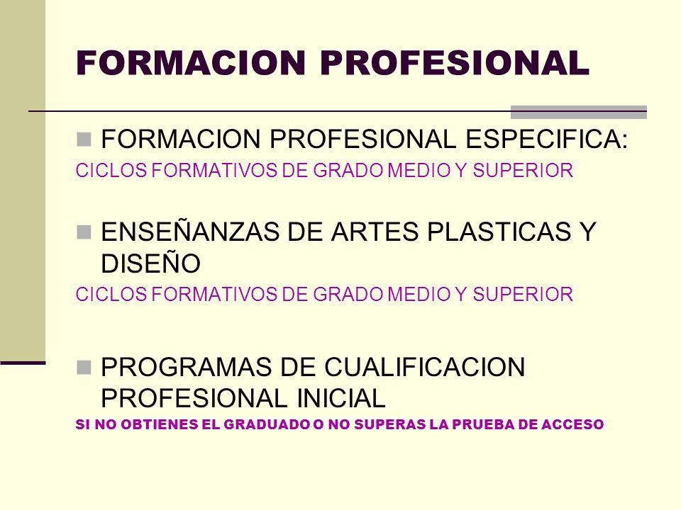 FORMACION PROFESIONAL FORMACION PROFESIONAL ESPECIFICA: CICLOS FORMATIVOS DE GRADO MEDIO Y SUPERIOR ENSEÑANZAS DE ARTES PLASTICAS Y DISEÑO CICLOS FORM