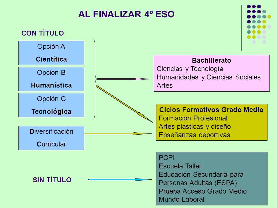 AL FINALIZAR 4º ESO Opción A Científica Opción B Humanística Opción C Tecnológica Diversificación Curricular Bachillerato Ciencias y Tecnología Humani