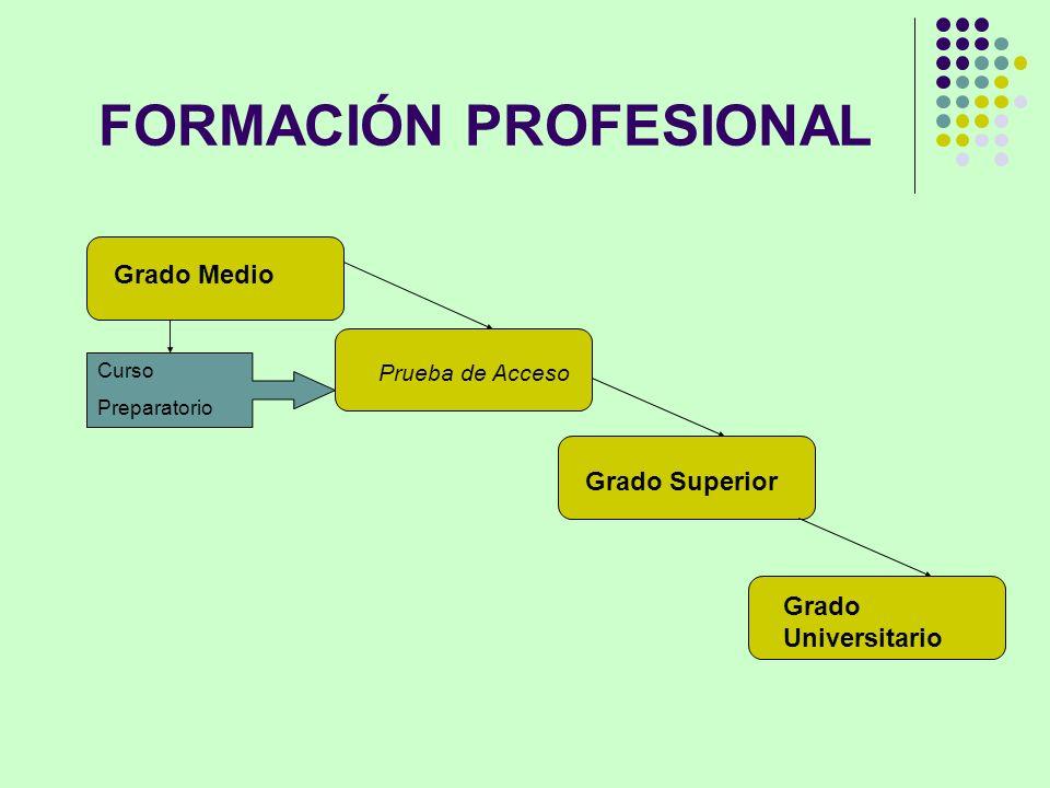 FORMACIÓN PROFESIONAL Grado Medio Prueba de Acceso Grado Superior Grado Universitario Curso Preparatorio