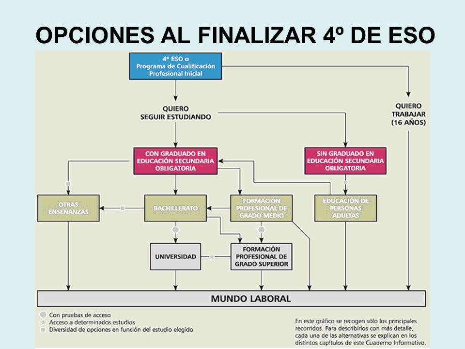OPCIONES AL FINALIZAR 4º DE ESO