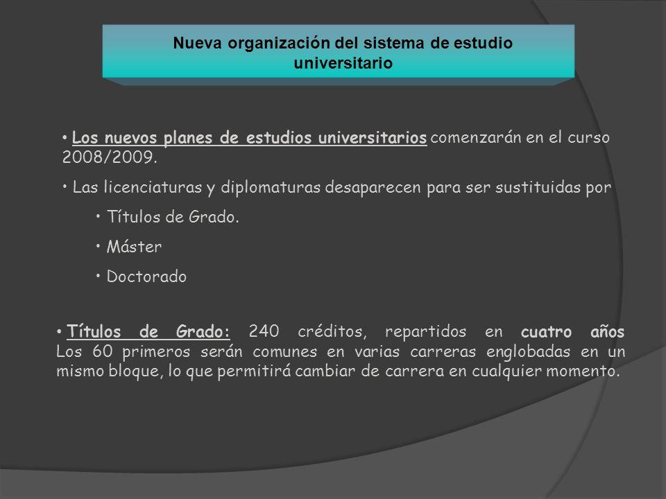 Los nuevos planes de estudios universitarios comenzarán en el curso 2008/2009. Las licenciaturas y diplomaturas desaparecen para ser sustituidas por T