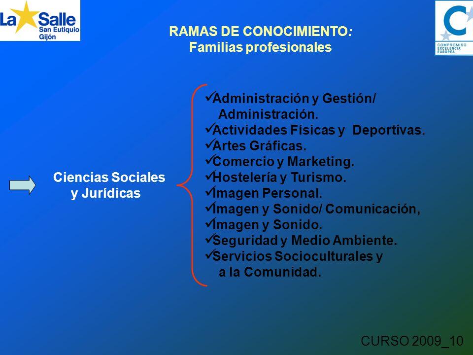 CURSO 2009_10 RAMAS DE CONOCIMIENTO: Familias profesionales Ciencias Sociales y Jurídicas Administración y Gestión/ Administración.