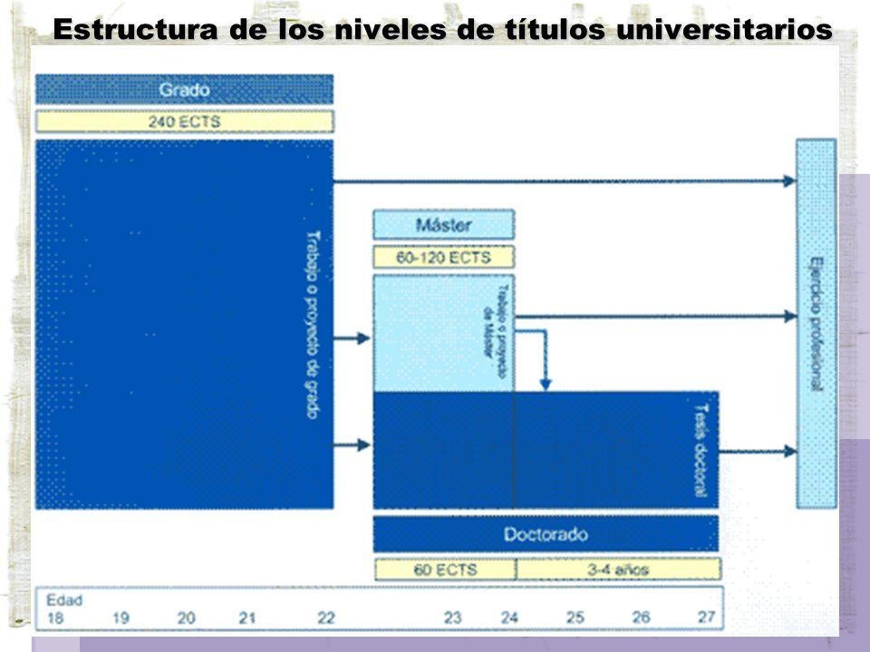 Estructura de los niveles de títulos universitarios