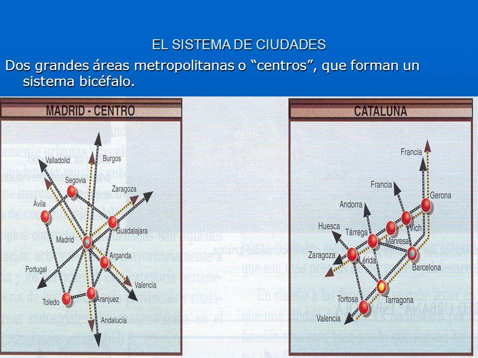 EL SISTEMA DE CIUDADES Dos grandes áreas metropolitanas o centros, que forman un sistema bicéfalo.