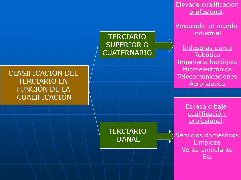 CLASIFICACIÓN DEL TERCIARIO EN FUNCIÓN DE LA CUALIFICACIÓN TERCIARIO SUPERIOR O CUATERNARIO TERCIARIO BANAL Elevada cualificación profesional. Vincula