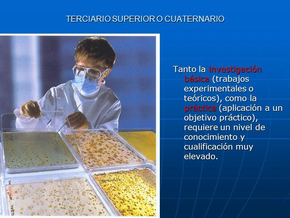 TERCIARIO SUPERIOR O CUATERNARIO Tanto la investigación básica (trabajos experimentales o teóricos), como la práctica (aplicación a un objetivo prácti