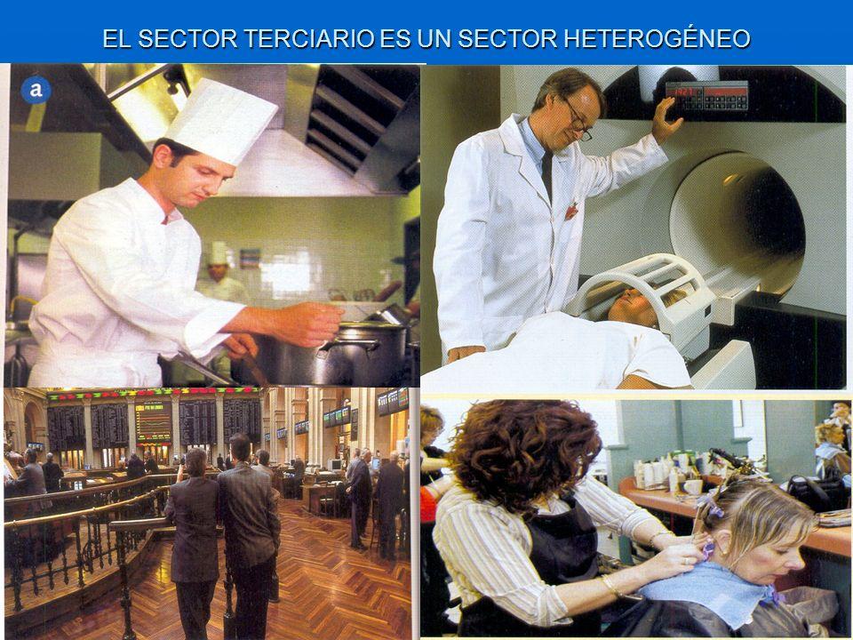 EL SECTOR TERCIARIO ES UN SECTOR HETEROGÉNEO