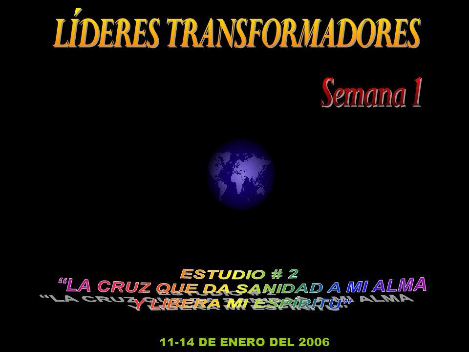 11-14 DE ENERO DEL 2006