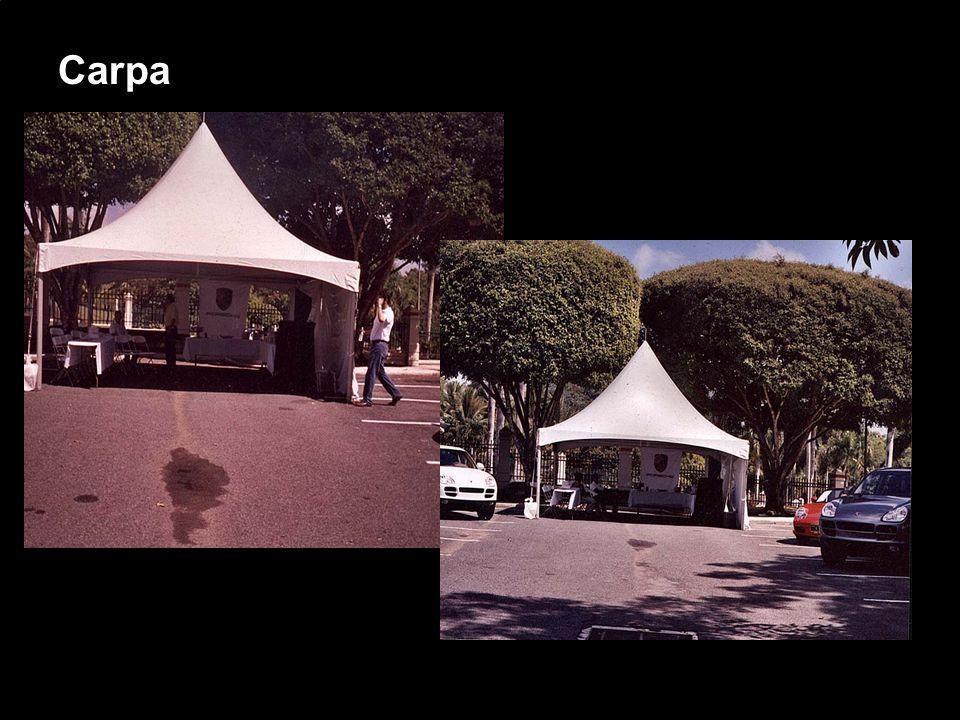 Porsche Latin America, Inc. 20 15 de junio de 2004 Carpa