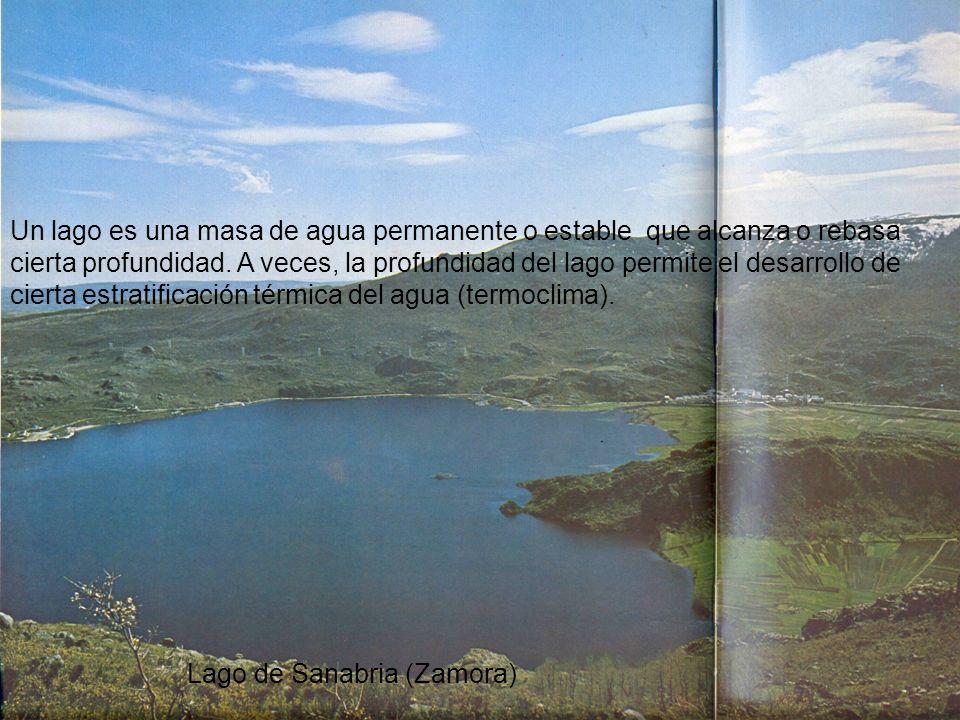 Un lago es una masa de agua permanente o estable que alcanza o rebasa cierta profundidad. A veces, la profundidad del lago permite el desarrollo de ci