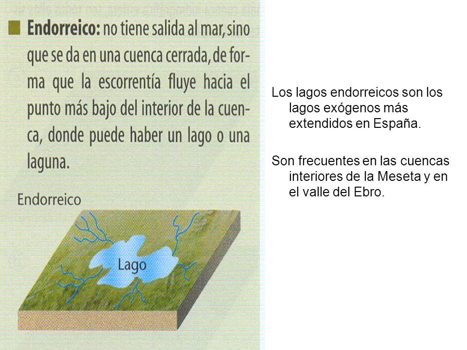 Los lagos endorreicos son los lagos exógenos más extendidos en España. Son frecuentes en las cuencas interiores de la Meseta y en el valle del Ebro.