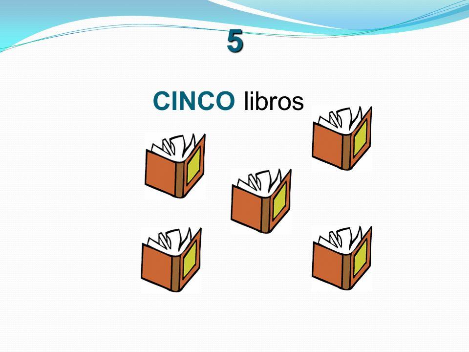6 SEIS libros