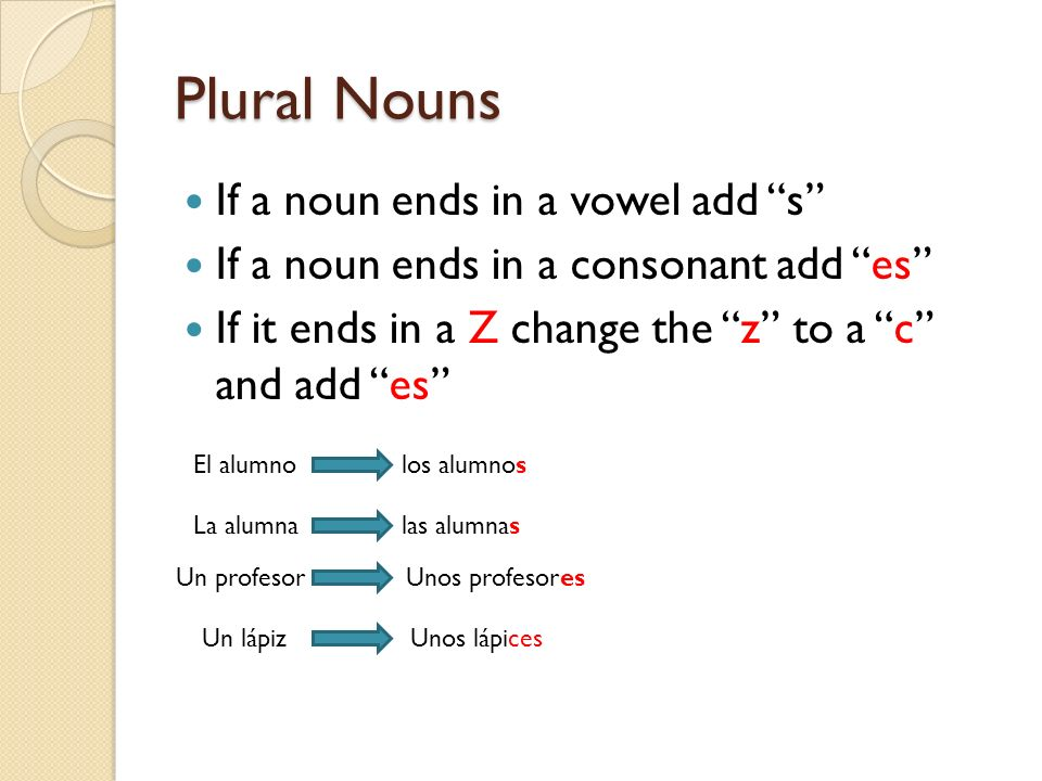 Plural adjectives Adjectives have to match the noun in number and gender.