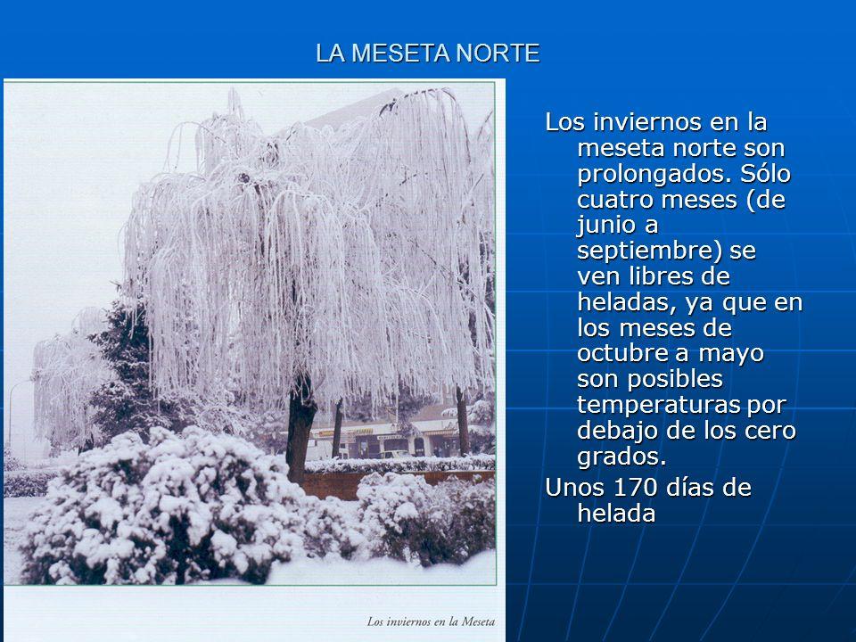 Los inviernos en la meseta norte son prolongados. Sólo cuatro meses (de junio a septiembre) se ven libres de heladas, ya que en los meses de octubre a