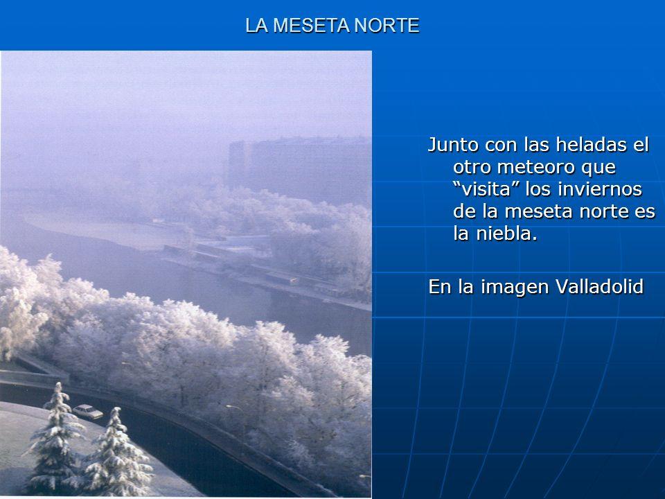 LA MESETA NORTE Junto con las heladas el otro meteoro que visita los inviernos de la meseta norte es la niebla. En la imagen Valladolid