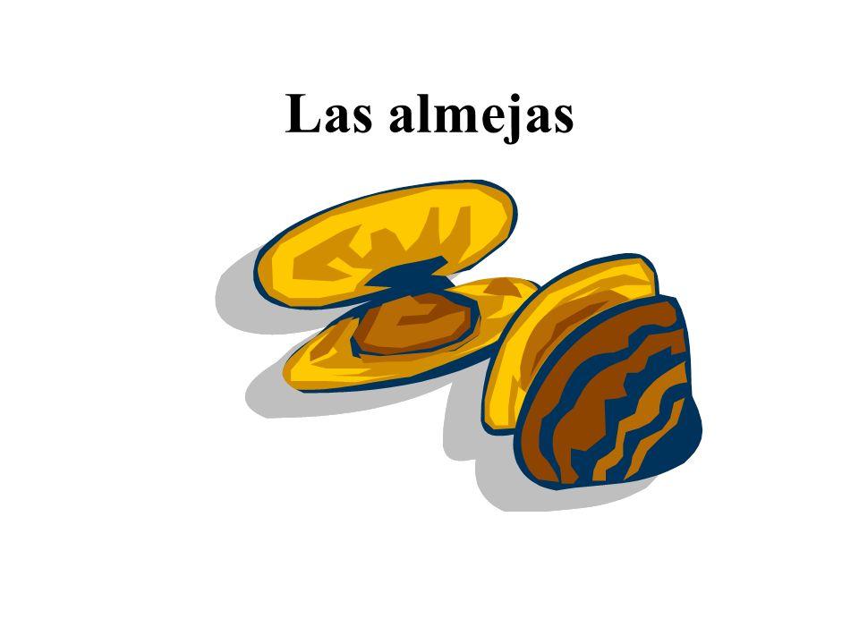 Las almejas