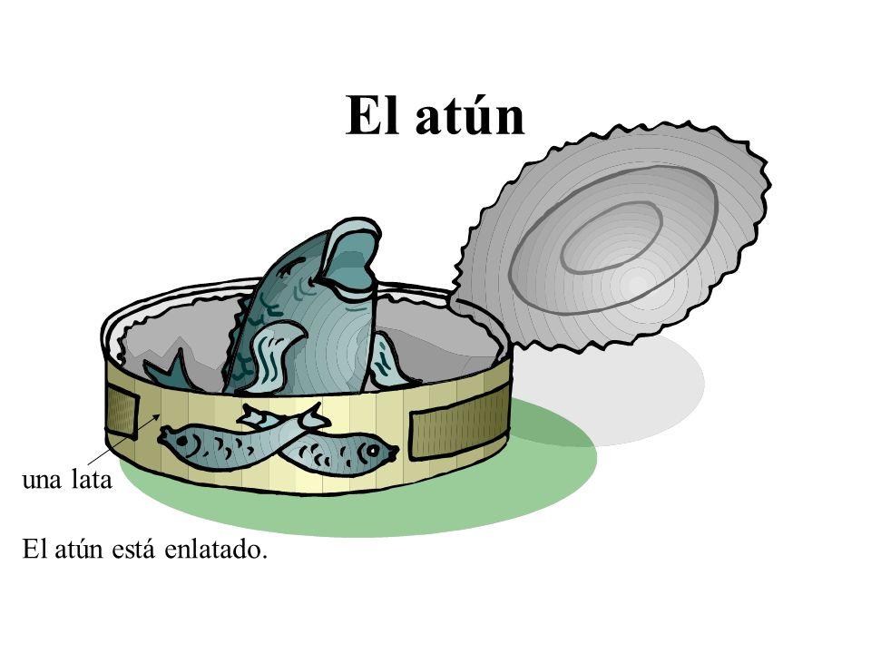El atún una lata El atún está enlatado.