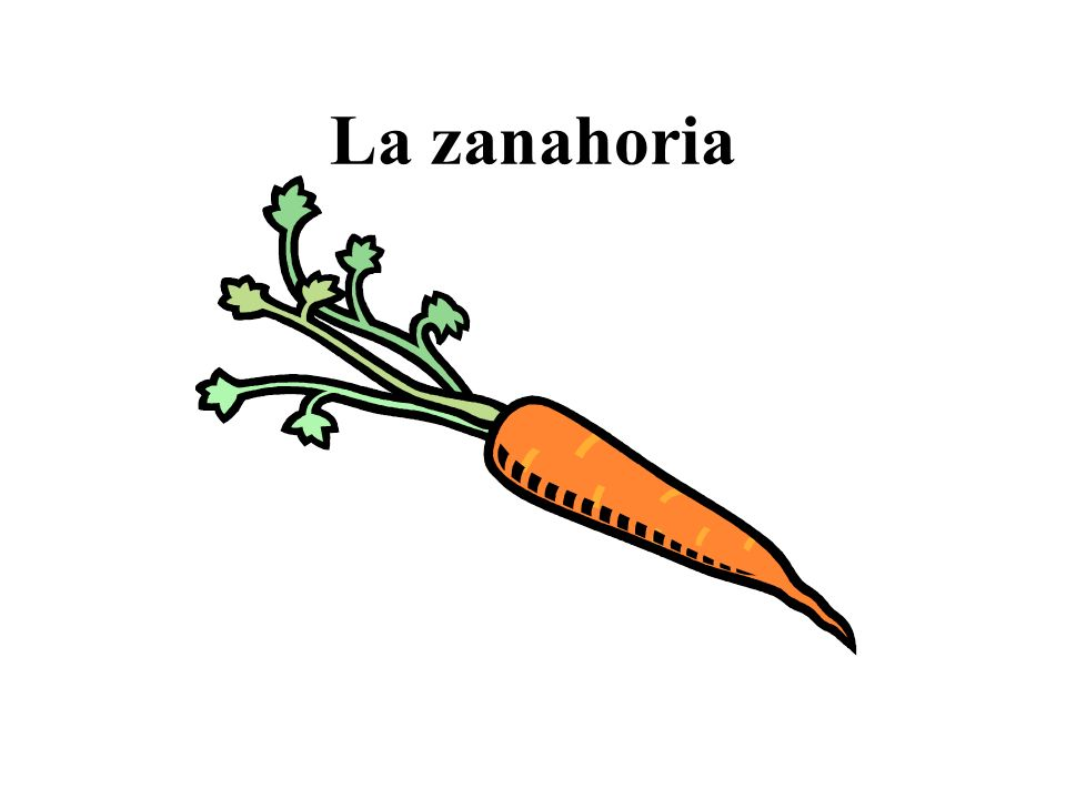 La zanahoria