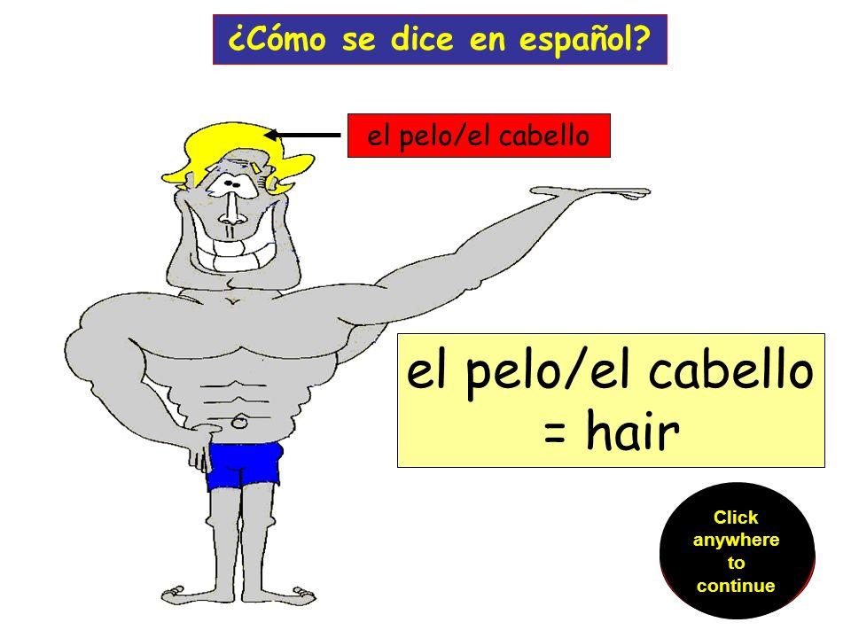 Los ojos ¿Cómo se dice en español.