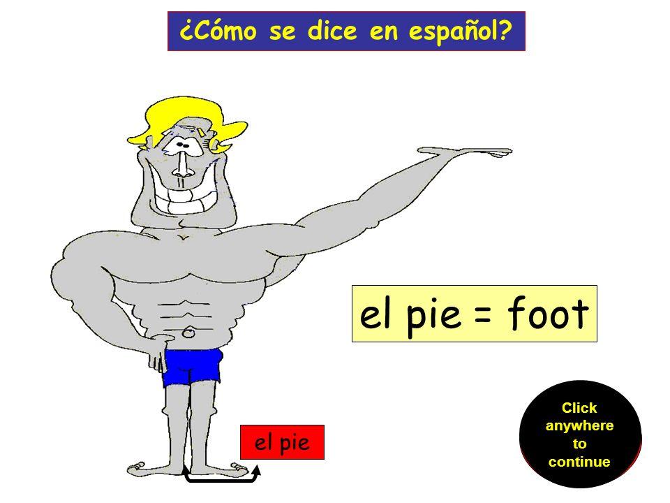el dedo ¿Cómo se dice en español.