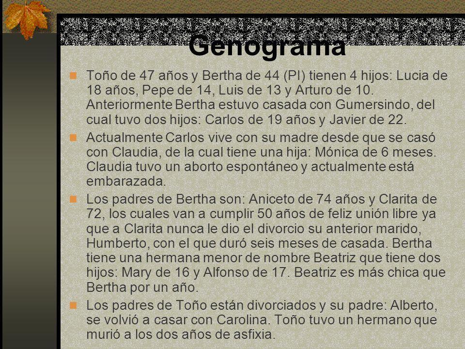 Genograma Toño de 47 años y Bertha de 44 (PI) tienen 4 hijos: Lucia de 18 años, Pepe de 14, Luis de 13 y Arturo de 10. Anteriormente Bertha estuvo cas