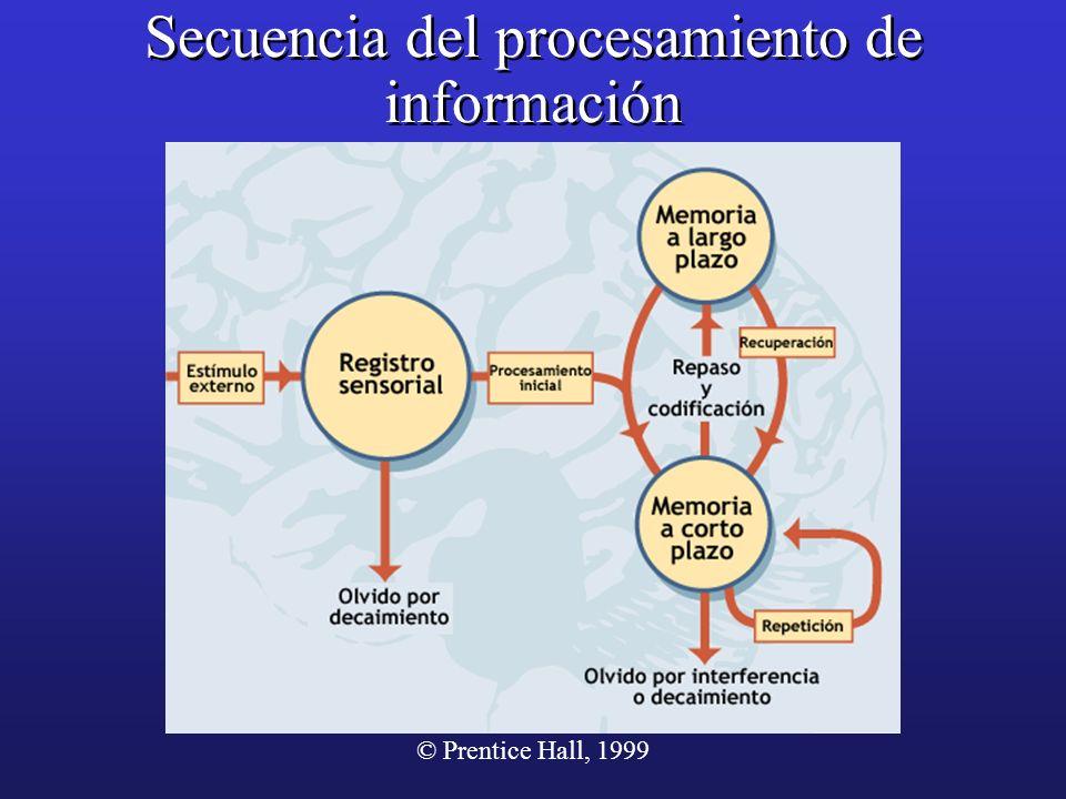 © Prentice Hall, 1999 Secuencia del procesamiento de información