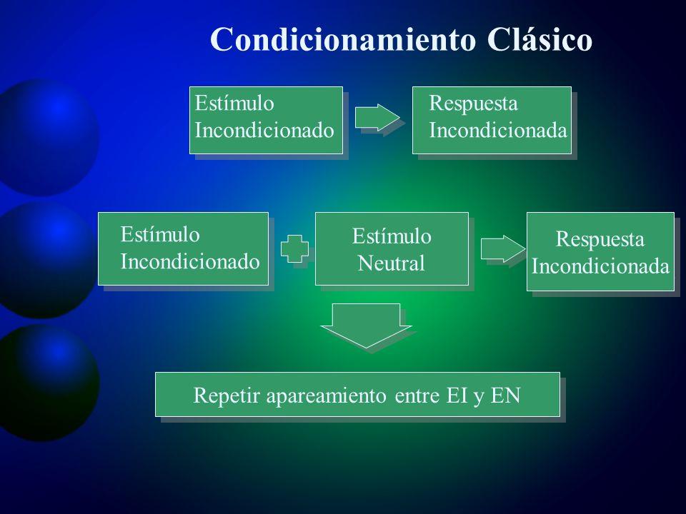 Estímulo neutral Estímulo neutral Respuesta Incondicionada Respuesta Incondicionada Estímulo Condicionado Estímulo Condicionado Respuesta Condicionada Respuesta Condicionada Estímulo Incondicionado Respuesta Incondicionada Estímulo Incondicionado Repetir apareamiento entre EI y EN Condicionamiento Clásico
