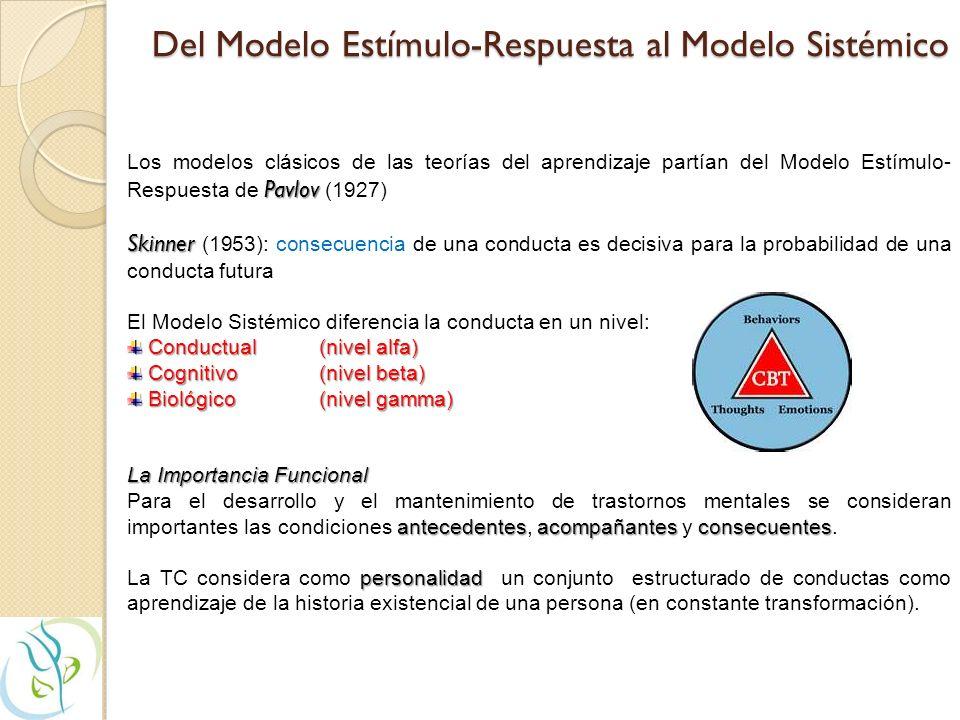 ANÁLISIS FUNCIONAL DE LA CONDUCTA A-C-C ¿Cuándo suele suceder la conducta problemática.