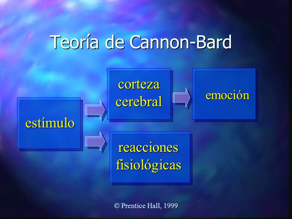 © Prentice Hall, 1999 Teoría de Cannon-Bard estímulo corteza cerebral reacciones fisiológicas emoción