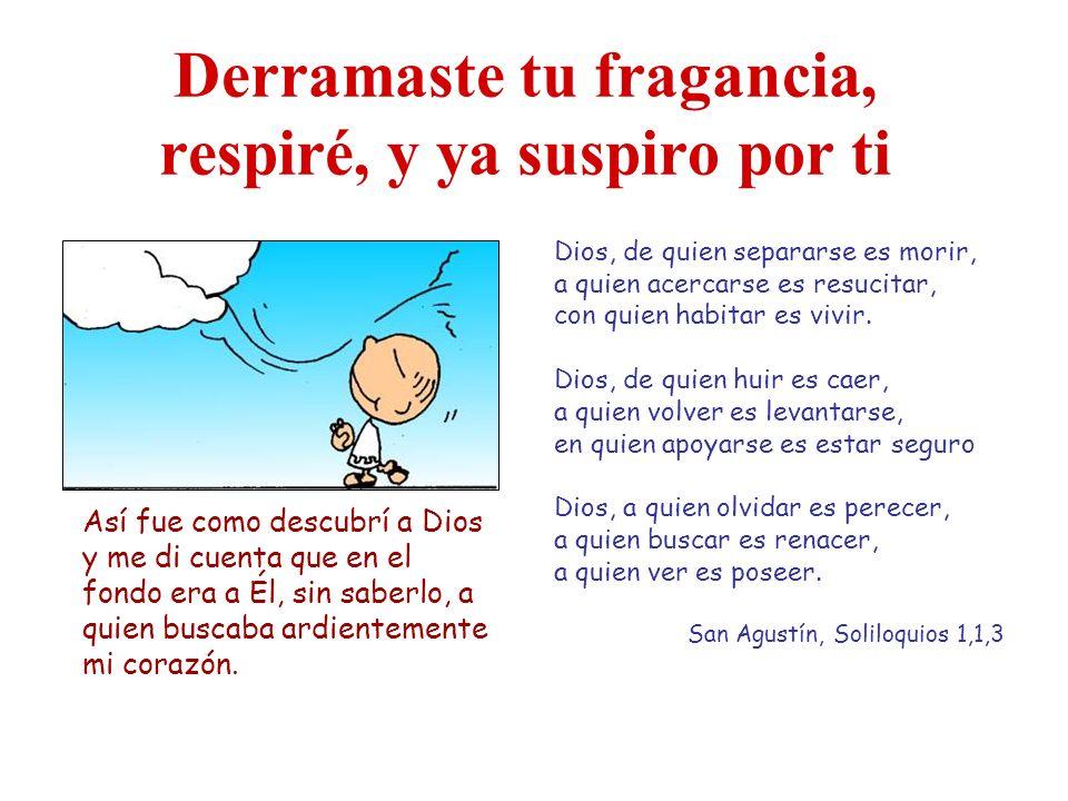 Derramaste tu fragancia, respiré, y ya suspiro por ti Dios, de quien separarse es morir, a quien acercarse es resucitar, con quien habitar es vivir.