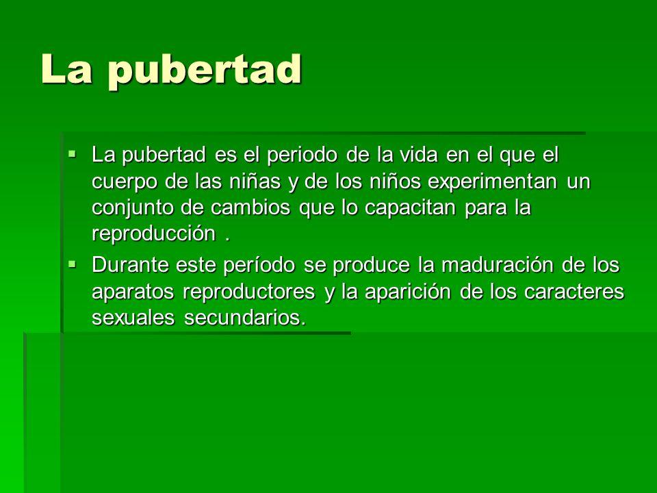 La pubertad La pubertad es el periodo de la vida en el que el cuerpo de las niñas y de los niños experimentan un conjunto de cambios que lo capacitan