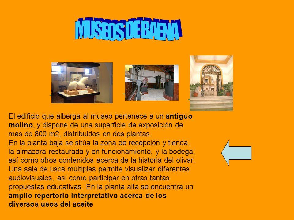 El edificio que alberga al museo pertenece a un antiguo molino, y dispone de una superficie de exposición de más de 800 m2, distribuidos en dos planta